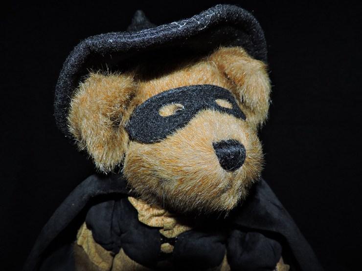 "#FridayFiction: 100-Word Challenge | ""The Brave Battle of The Masked Bearvenger"""