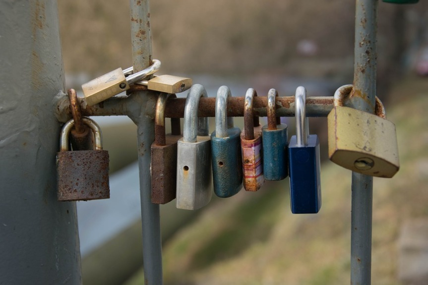 "#Friday Fiction 100-Word Challenge / ""The Girl Who Takes Pictures of Locks"""