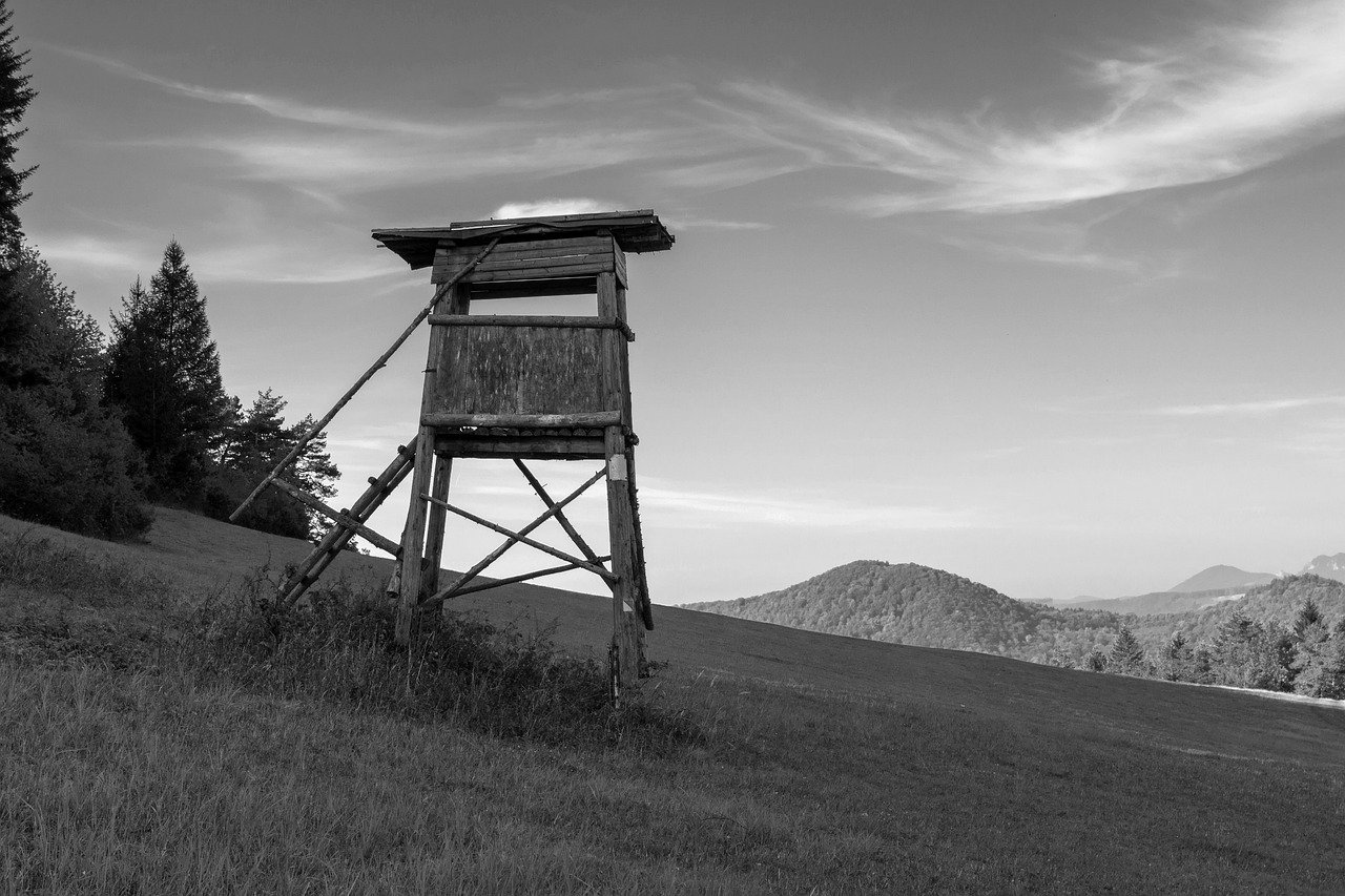 Wooden Watchtower geno153 on Pixabay