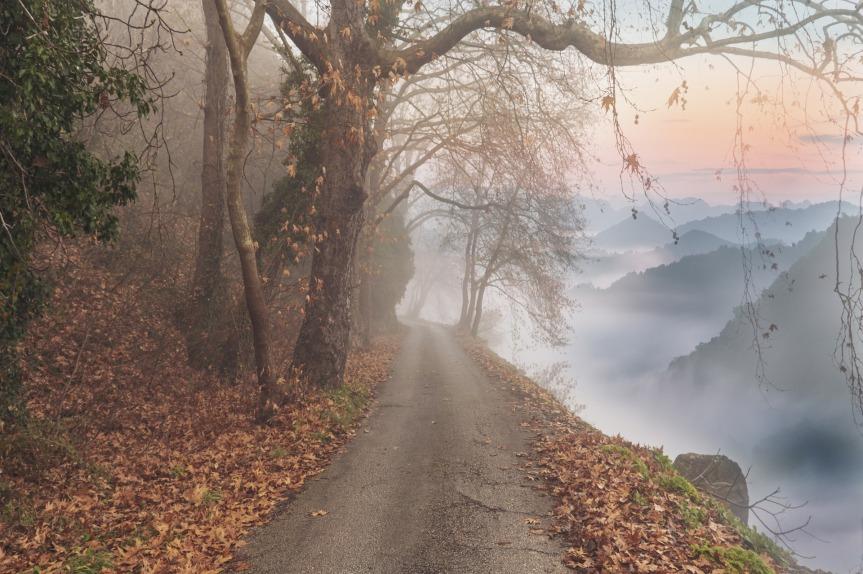 Autumn Wooded Mountain Path by enriquelopezgarre on Pixabay