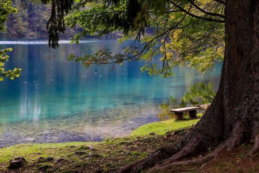 bench-by-a-blue-green-lake-by-ilyessuti-on-pixabay